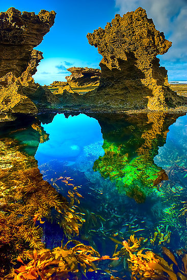 bluepueblo:  Sorrento Back Beach, Australia photo via fragile
