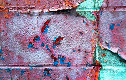 Wall… by All the Color on Flickr.