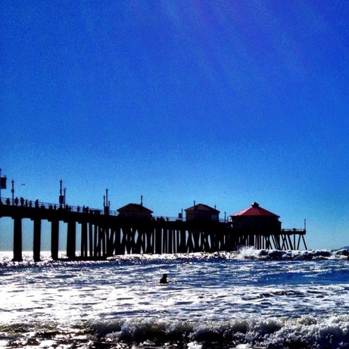In Water. #beach #surf #surfers #water #ocean #blue #palmtrees #sand #pier  #popularpage #iphone4s  #beaches #earlybird #editoftheday #blue #instagramers #instagram #iphonography  #iphone #iphoneonly #instagood #iphone4 #instagramhub #picoftheday #jj #california #sunlight #sun #yellow #instafamous #beautiful   (Taken with instagram)