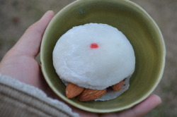 Day 79: Oskar the Mochi Sandwich I performed some surgery on a mochi ball today. Cut him open, then added some almonds inside. Turns out the almonds look like teeth. So I've named him Oskar. Hello, Oskar. Nice to eat you.