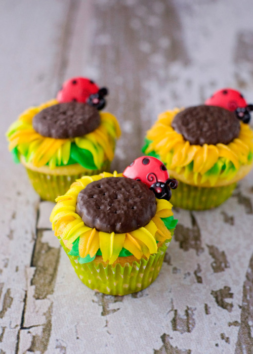 happythings:  gastrogirl: sunflower cupcakes.