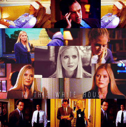 "The West Wing - In This White House, 2x04 as requested by kirkwoodisinoregon ""Toby, come quick! Sam's getting his ass kicked by a girl!"" ""Ginger, get the popcorn!"""