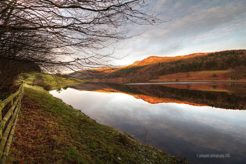 upper derwent valley on Flickr.