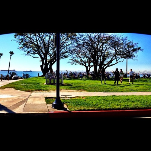 Sunroof Series: Yoga.  #ocean #park #popularpage #iphone4s  #green  #editoftheday #white #instagramers #instagram #iphonography  #iphone #iphoneonly #instagood #iphone4 #instagramhub #picoftheday #blue #california #yoga #sky #colo #ig #igers (Taken with instagram)