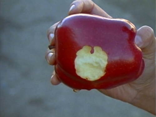 fromjtoz:   Gap-Toothed Women (Les Blank, 1987)  what you see on my fruits  runs on my dads side of the family. me, my sister, and brother all inherited :B lol