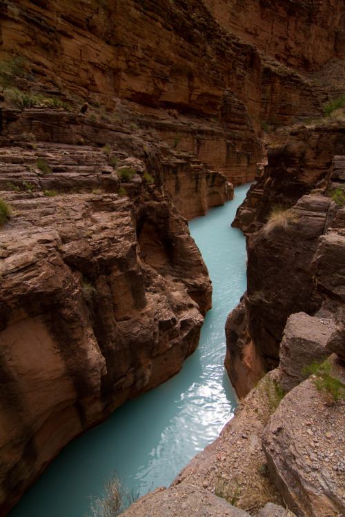 tupac:  Havasu Creek