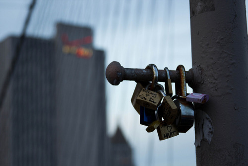 Padlocks of Love on Flickr.