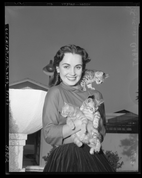 Susan Cabot with three kittens, circa 1950  Image Source: Flickr