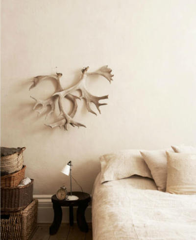 blainepearson:  Antlers (via desire to inspire - desiretoinspire.net)
