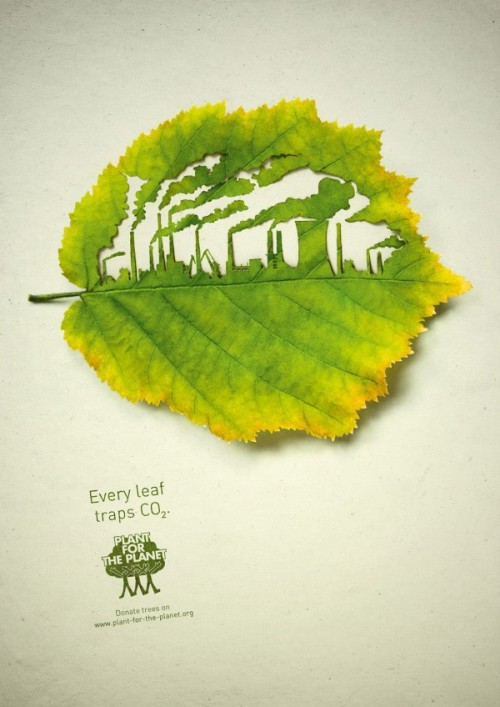 Cut Leaf Illustrations for 'Plant for the Planet'