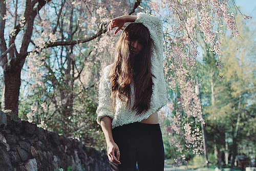 floralls:  cherry blossoms (by elizabeth sarah)