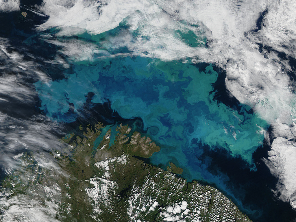 Barents Sea (by NASA Goddard Photo and Video)