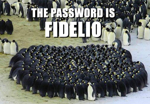 That's correct, sir! That is the password…