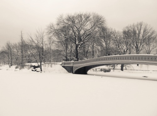 "Bow Bridge and trees in the snow. Central Park winter. New York City.  I miss the snow.    I miss the silence: deafening silence punctuated by small breaths signifying flutters of life in a world swallowed by the sinking, seductive embrace of serenity.  That type of serenity isn't easy to come by in a city that moves faster than the speed of hope: it's frenetic core blinked into existence by anxious dreamers.  If I hold still, very still, for just a moment and close my eyes, I can paint my serenity memory on the backs of my eyelids.   In this moment the world stops rotating long enough and my breath reverberates alongside the earth's heartbeat.   —-  View this photo larger and on black on my Google Plus page   —-  Buy ""Serenity Memory - Bow Bridge in the Snow - Central Park"" Posters and Prints here, View my store, email me, or ask for help."