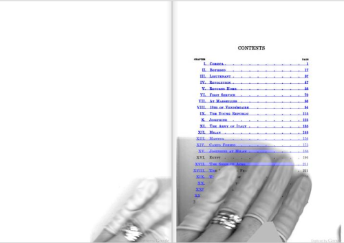 theartofgooglebooks:  Autolink over the fingers of a Google Books employee. From the table of contents of Napoleon: A Sketch of His Life, Character, Struggles, and Achievements by T. E. Watson (1902).  Until Google Books decides to fix it, that person's hand is a part of that book. Pretty fascinating, actually…