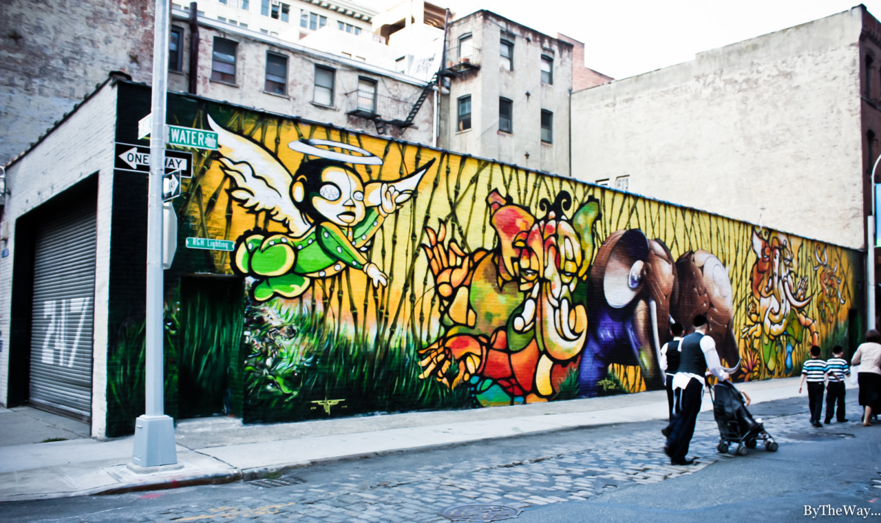 Graffiti in Water street (DUMBO) - Brooklyn, NYC