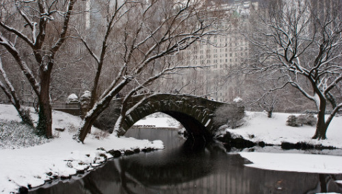 Alaska proposes federal takeover of NYC's Central ParkDeclaring turnabout is fair play, Alaskans tired of interference from 'East Coast environmentalists' offer a legislative retort.