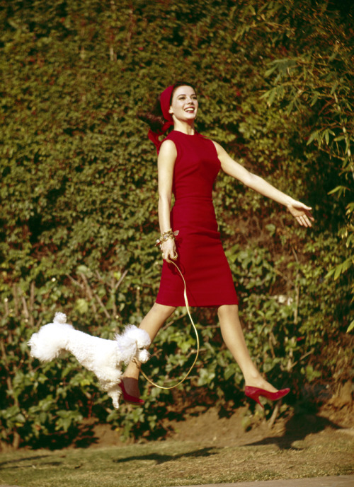 Natalie Wood defies gravity