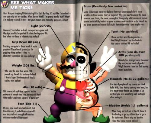 vgjunk:  More reasons to love Wario.