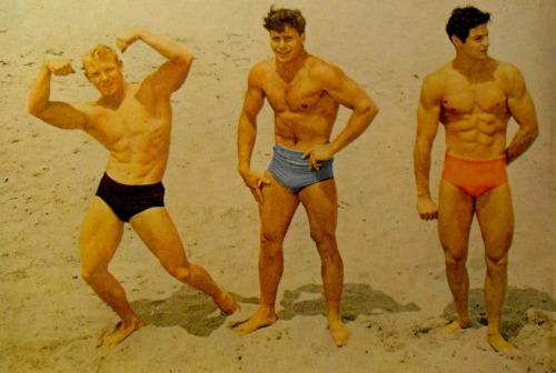 muscle men on beach in swim trunks bodybuilding (1950) #2