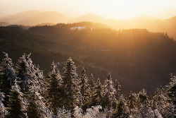 lanciare:  winter sun (by Dennis_F)