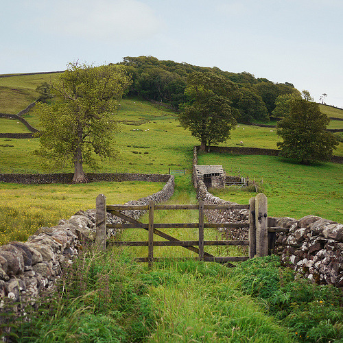 bluepueblo:  Stone Walls, Settle, England photo by wildgoose