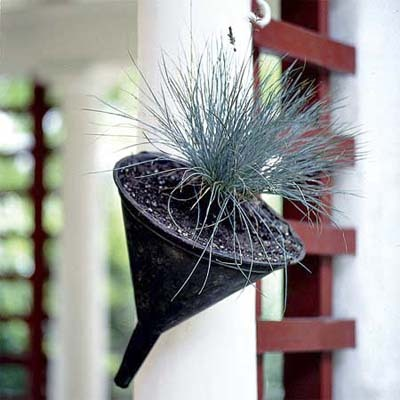gardensinunexpectedplaces:  Vintage metal funnels make fine mini hanging planters. Bonus: Built-in drainage! (via This Old House)