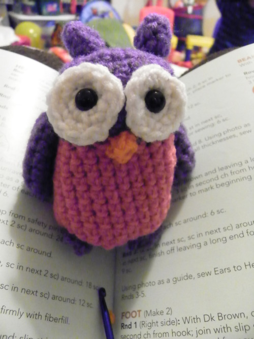 snickleboom:  I also made this little owl for my daughter.  She picked the color scheme ;)