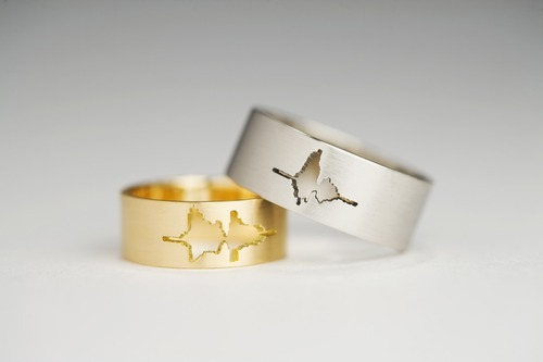 "audreyloveslife:  Custom-made wedding bands with waveform of the couple's own voices saying ""I do."""