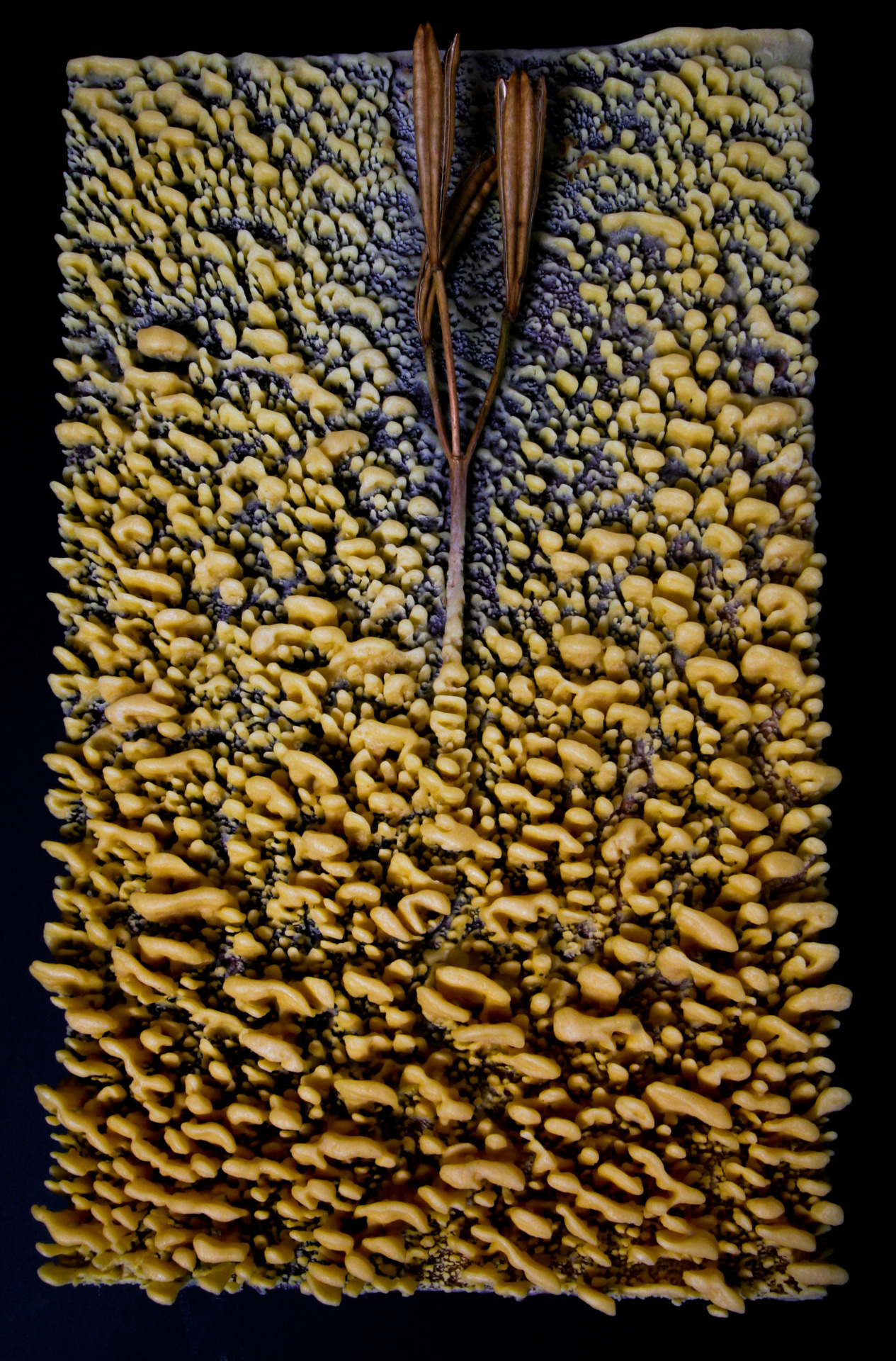 "Christopher Brown, ""Living in the Resurrection"", beeswax, lily seed pod, on wood. Photo: Laura Meek"