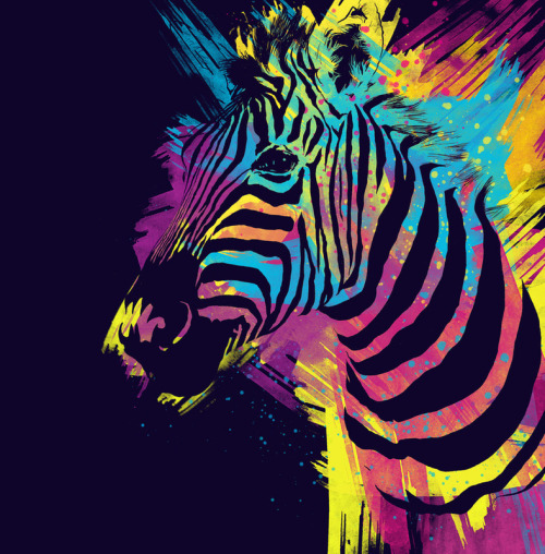 devidsketchbook:  Zebra Splatters by Olechka