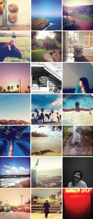lucyhewett:  my @instagram shots from January 2012 via Hawaii, L.A., Puerto Rico, and Chicago