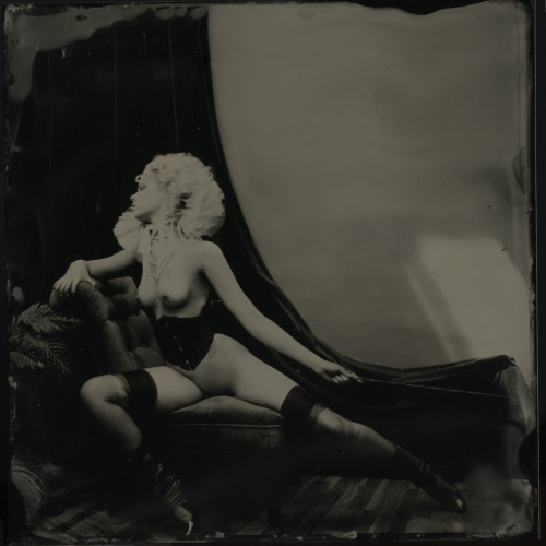 elizagauger:  The Countess2011digital composite of six tintype photographic plates by Sweatnapper client: Six Finger Spread