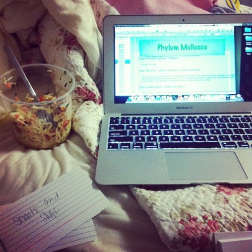 my view: biology and wegmans pasta. day 1. feb photo a day.