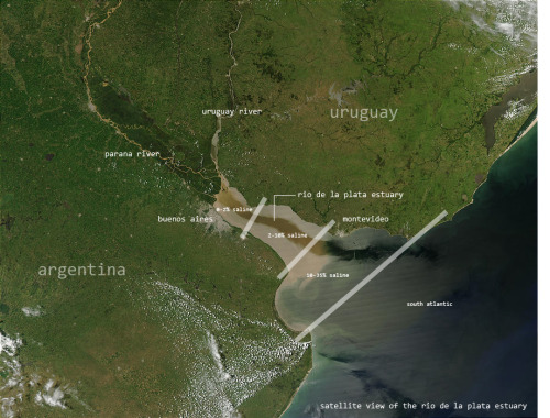 This image indicates the different salinity zones of the Rio de la Plata estuary.  The water is considered fresh at the city of Buenos Aires.  However, during sudestada weather events southeasterly winds push a wall of ocean water up the estuary, backing up the rivers and flooding saltwater into the waterways.