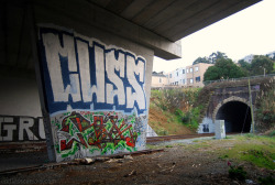 CUSS Roller - San Francisco, CA on Flickr.Via Flickr: Daily Graffiti Photos and Street Art Culture… www.EndlessCanvas.com Follow us… Facebook, Tumblr, YouTube, Twitter