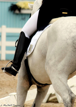 Dressage on Flickr.