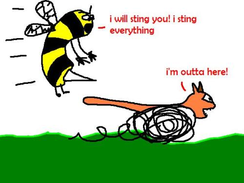 Bee is trying to sting a cat