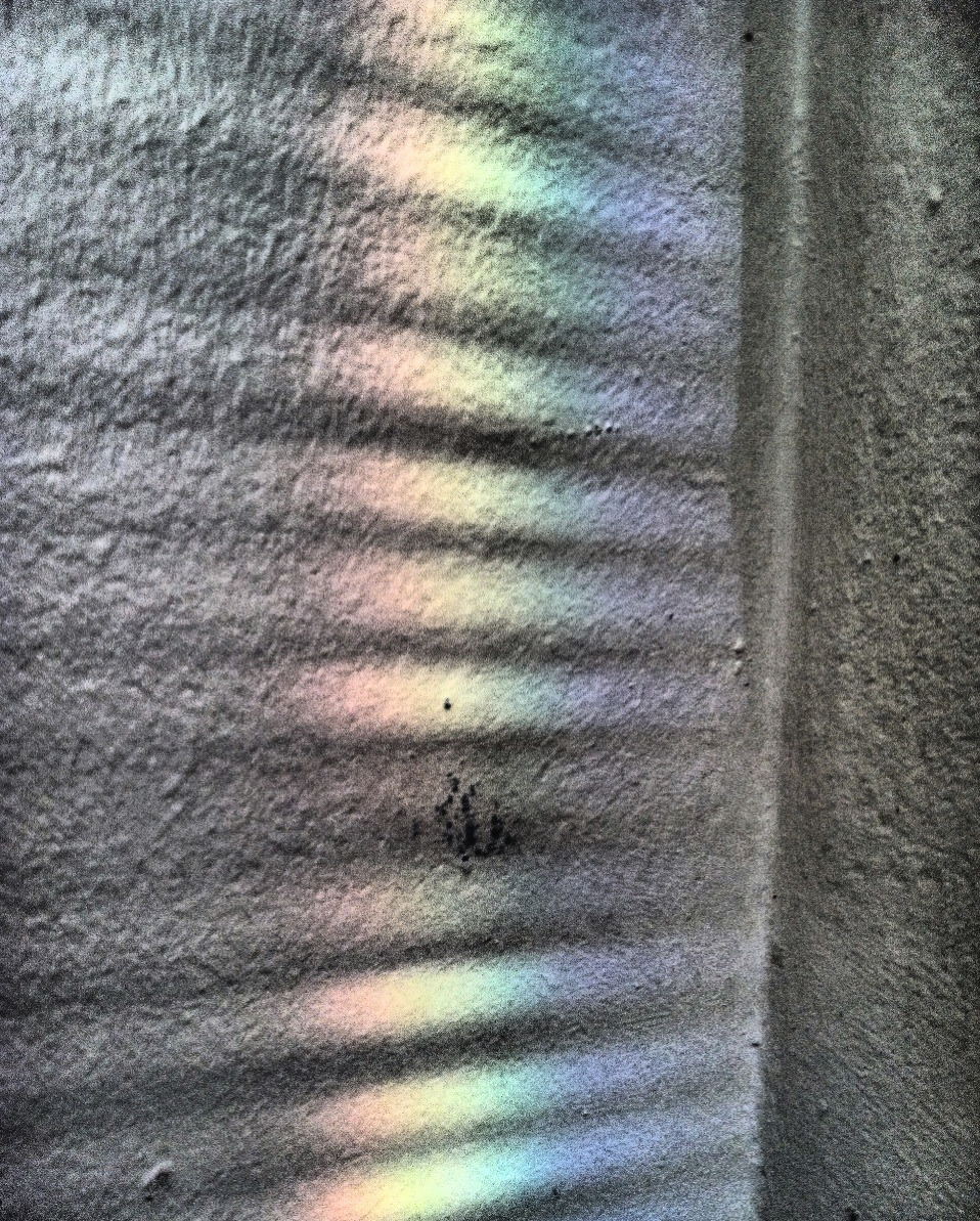 052/365 - 02.01.2012 - 'Morning Wall' Photo: Zachary Brown - 2012 - iPhone 4 w/ Dynamic Light & Filterstorm  This work is licensed under a Creative Commons Attribution-NonCommercial-NoDerivs 3.0 Unported License.