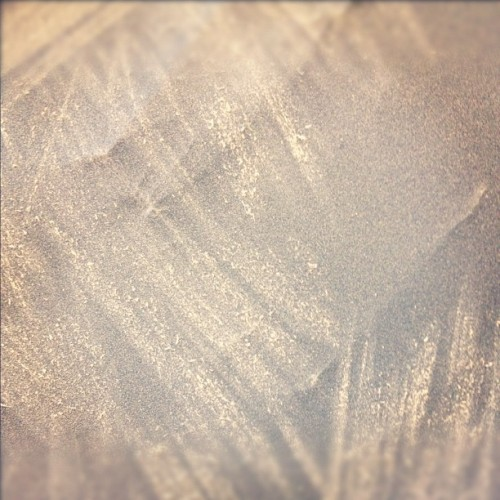sandpaper+leather (Taken with instagram)