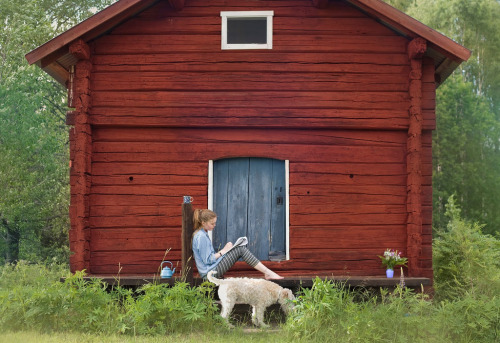 "ettannorlundaliv:  cabinporn:  Wooden buildings often aren't arbitrarily red. Falu red (pronounced ""FAH-loo"", in Swedish it's Falu rödfärg) is the name of a Swedish, deep red paint well known for its use on wooden cottages and barns for preservation. The paint originated from the copper mine at Falun in Dalarna, Sweden and consists of water, rye flour, linseed oil and tailings from the copper mines of Falun which contain silicates iron oxides, copper compounds and zinc. Falu red is still widely used in the Swedish countryside. Photo by Anna Ådén.  Dröm en liten dröm…"