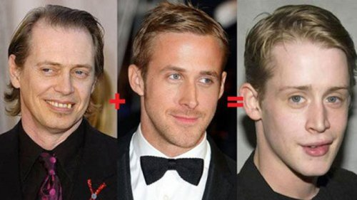 Steve Buscemi + Ryan Gosling = Macaulay Culkin   Buzz, your math, WOOF!