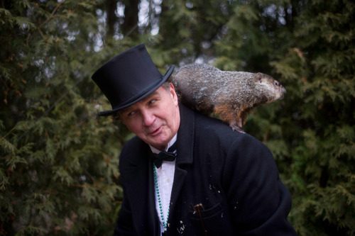 Photo of the day: Punxsutawney Phil perches on the shoulder of groundhog handler John Griffiths on Feb. 2 during the 126th annual Groundhog Day festivities in Punxsutawney, Pa. Moments earlier, the famous groundhog had predicted six more weeks of winter after seeing his shadow after leaving his burrow. If Phil had not seen his shadow, that would mean an early spring is on the way. But not all of the nation's furry forecasters agree: New York's Staten Island Chuck predicted an early spring, as did Georgia's Gen. Beauregard Lee.