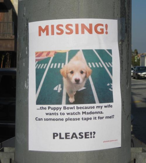 Missing Puppy Bowl Street Sign