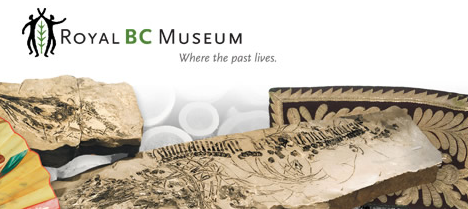 Did you know that the Royal BC Museum in Victoria contains over 7 million objects? Now you can view a bunch of them online by using newly developed search engines! Click here to be directed to RBCM's search collection website.