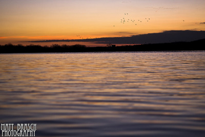 Migrating South on Flickr.This photograph was taken at Peace Valley Park in Bucks County, PA on January 31, 2012 by Matthew Brasch. Camera: Canon EOS Rebel T3i Lens: Canon EF 50mm f/1.8 Focal Length: 50 F Number: f/2 Shutter Speed: 1/250