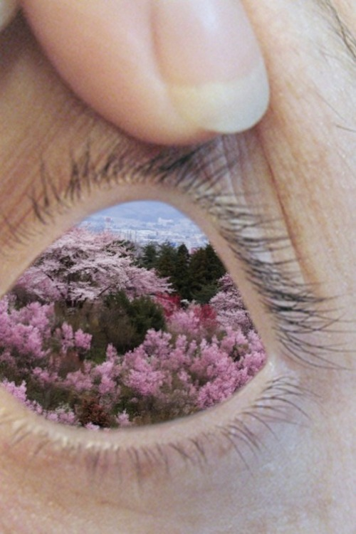 liveloveflyhigh:  WOAH  The camera goes where the human eye wishes it could…