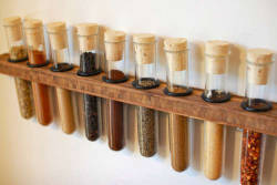 DIY Test Tube Spice Rack via Instructables.com