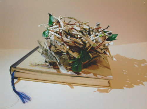 book sculpture, birds nest by olivia jones