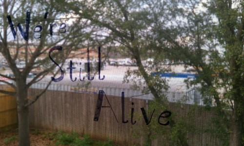 Written on a window on the second story of our house here…